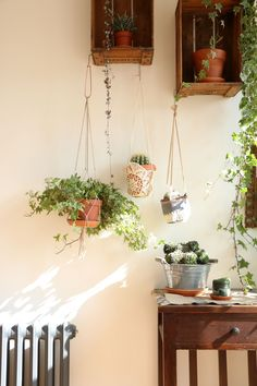 hanging planters via @lobsterandswan