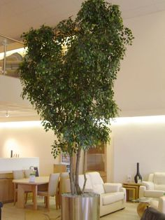 Best Sale Indoor Decoration Large Artificial Ficus Plant Tree ...