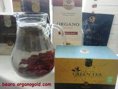 Grüner Tee aus organischem Anbau mit Ganoderma und Cranberries - reich an zusätzlichen Antioxidantien Cranberries, Cocktails, Magic, Tea, Green, Green Tee, Craft Cocktails, Cocktail, Teas