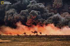 125 years of National Geographic: Stunning photography since 1888 - Yahoo News Canada