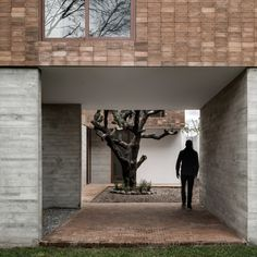 Pixellated clay bricks clad this Mexican house, which AS/D Asociación de Diseño has arranged around a cactus tree.