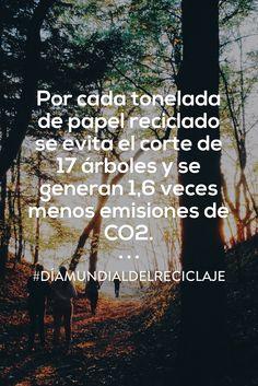 Una tonelada de papel reciclado evita el corte de 17 árboles: #DiaMundialdelReciclaje #Reciclaje