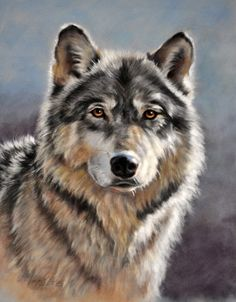 paintings of wolfs | Wolf Portrait | Wolf Portraits
