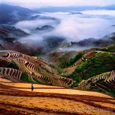 Longji terraced fields, Guilin, China