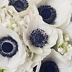 White and navy floral inspiration