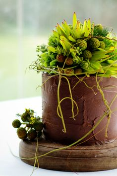 Dark chocolate, red wine and cherry cake with textured green flowers.