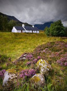 Scotland: The Cottage on the Moor ~ Angie Latham