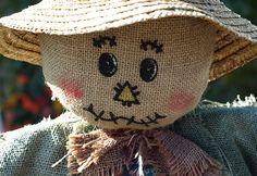 Make a Scarecrow for Your Garden   Garden Club