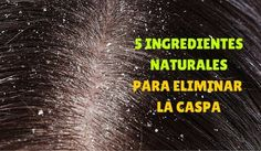 Cómo eliminar la caspa con ingredientes naturales Vinager, Hair Repair, Natural Treatments, Face And Body, Healthy Hair, Home Remedies, Body Care, Beauty Hacks, Beauty Tips