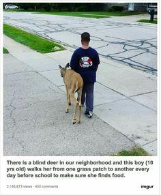 10 year-old helps a blind deer