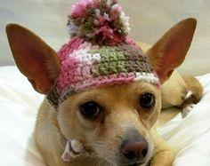Sombrero de perro ganchillo lana Navidad Candy caña por ShaggyChic