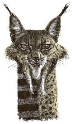 Cat Illustration by Ricardo Martinez #cat #art