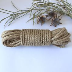 EdenEve Macrame is a homeware and craft store. We sell Macrame Wall Hangings, Plant hangers, and make custom pieces. We sell Macrame Rope and offer. Square Baskets, Rope Basket, Plant Hanger, Craft Stores, Jute, Weaving, Crafty, Texture, Knitting