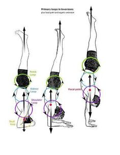 Yoga: headstand to handstand