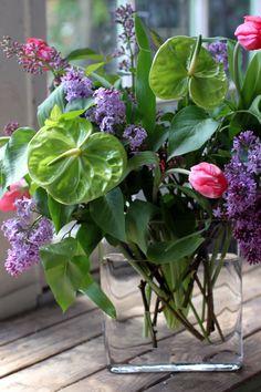 lime green anthurium puple lavender lilac pink tulip spring flowers Spring Flower Arrangements, Spring Flowers, Floral Arrangements, Pink Tulips, Lilac, Lavender, Floral Shops, Floral Design, Amazing Pictures