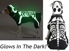 Glow Bones Glow-in-the-Dark Skeleton Glowbones Halloween Dog Costume