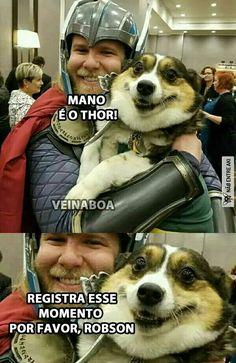 Registrar o momento . memes humor meme brasil memesbrasi… Record the moment. Top Memes, Best Memes, Funny Animals, Cute Animals, Comic Anime, Memes Status, Marvel Memes, Funny Moments, Thor