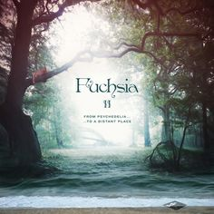Fuchsia II From Psychedelia to a Distant Place, by Fuchsia