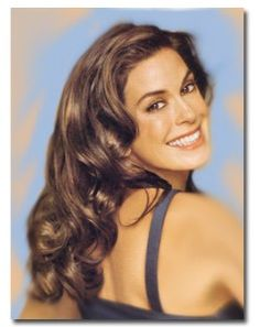 Teri Hatcher shows off her long layered dressy hair style.