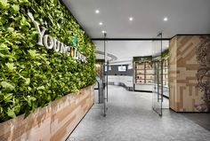 Akin to how the company celebrates the harmony between nature, body, mind, and soul, the space harvests the rhythm of nature where traffic flows naturally and makes a visit uplifting and invigorating Green Walls, Young Living, Singapore, Harvest, Mindfulness, Space, Nature, Floor Space, Naturaleza