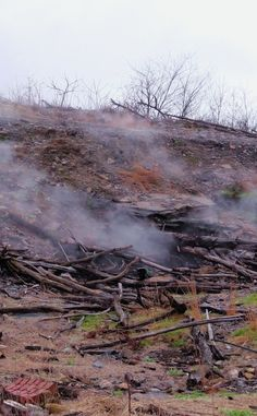 Centralia (Ghost Town)   Travel   Vacation Ideas   Road Trip   Places to Visit   Centralia   PA   Abandoned Place   Offbeat Attraction