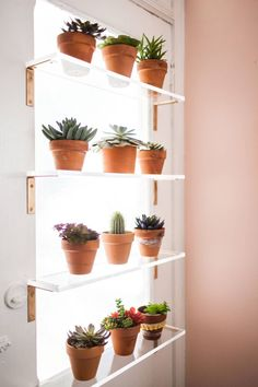 Plant shelving -- acrylic shelves and cheap hardware store brackets, gold Cheap Home Decor, Diy Home Decor, Kitchen Window Shelves, Kitchen Windows, Garage Windows, Regal Bad, Window Plants, Window Sill, Window Coverings