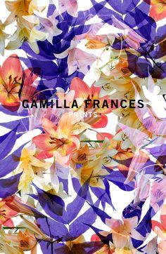 Camilla Frances - floral
