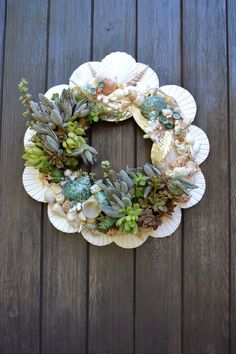 Would be pretty with air plants. Glue shells on wreath base, adds plants and decorations, mist occasionally. Succulent Arrangements, Cacti And Succulents, Planting Succulents, Seashell Crafts, Beach Crafts, Seashell Wreath, Decoration Plante, Succulent Wreath, Cactus Y Suculentas