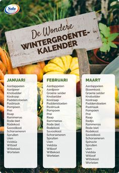 Wintergroentekalender