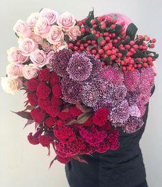 60 vind-ik-leuks, 6 reacties - Vanessa Pringle Floral Designs (@vanessapringlefloraldesigns) op Instagram: 'A fabulous market morning. Lots of fresh flowers, berries and foliage! • • • #bathurstflorist…' Floral Designs, Fresh Flowers, Tango, Berries, Floral Wreath, Rose, Instagram, Floral Crown, Pink