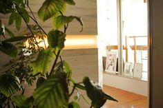 【壁面緑化】 美容室『Mag』様
