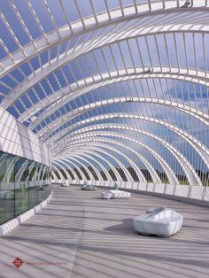 Florida Polytechnic University   Santiago Calatrava; Photo © Alan Karchmer for Santiago Calatrava   Archinect
