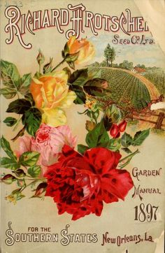 Richard Frotscher Seed Co Ltd. Garden Manual For the Southern States. New Orleans, La. Department of Agriculture, National Agricultural. Seed Illustration, Floral Illustrations, Vintage Labels, Vintage Postcards, Vintage Images, Vintage Art, Vintage Seed Packets, Garden Labels, Seed Packaging