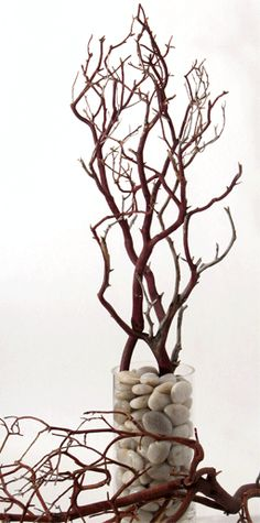 manzanita branches...love for centerpieces, website also has other cheaper alternatives