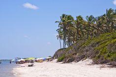 """Nordeste brasileiro: PRAIA DE MURO ALTO (PERNAMBUCO) A sossegada praia é um dos destinos favoritos de turistas que visitam Porto de Galinhas. Seu nome vem das falésias altas que cercam a faixa de areia. O famoso passeio de bugue """"ponta a ponta"""" leva os turistas de Muro Alto até o Pontal de Maracaípe."""