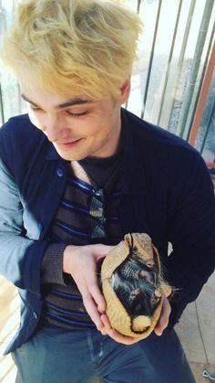 That is an armadillo. | G Way (@gerardwayGR) | Twitter