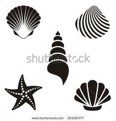 Set of various black sea shells and starfish