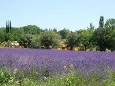 Gites ruraux en France, idées pour les vacances