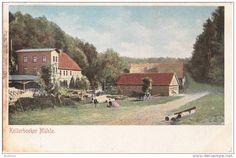 Stettin Buchheide Kellerbecker Sägewerks mühle belebt color ungeteilte Rückseite also 1905 oder früher