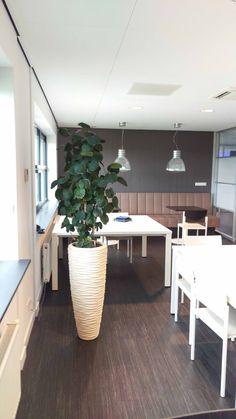Polystone seaside white planter met Polyscias fabian. In het restaurant van Dentaid in Houten. Restaurant, Decor, Ideas, Furniture, Decoration, Diner Restaurant, Restaurants, Decorating, Dining