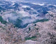 Mount Yoshino - Japan