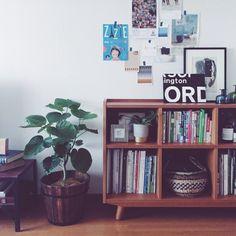 観葉植物/シェルフ/ALBERO/unico/ウニコ/LUMBER…などのインテリア実例 - 2015-09-12 15:38:46 | RoomClip(ルームクリップ)