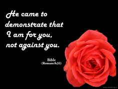 He came to demonstrate that I am for you, not against you. ~Bible #ShriPrashant #Advait #bible #jesus #god #love #self #intelligence #light Read at:- prashantadvait.com Watch at:- www.youtube.com/c/ShriPrashant Website:- www.advait.org.in Facebook:- www.facebook.com/prashant.advait LinkedIn:- www.linkedin.com/in/prashantadvait Twitter:- https://twitter.com/Prashant_Advait