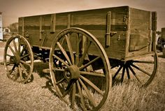 Old farm wagon just cuz I want one with matching team