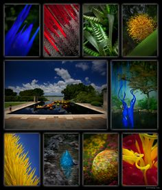Chihuly glass sculptures
