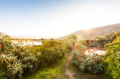 10 of the best riverside stays in Vermaaklikheid Weekends Away, Lazy Days, Cape Town, South Africa, Places To Go, Wanderlust, Track, Country Roads, Good Things