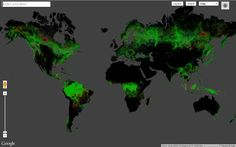 First Detailed Map of Global Forest Change. 2013 — A University of Maryland-led, multi organizational team has created the first high-resolution global map of forest extent, loss and gain. Google Earth, Maryland, Interactive World Map, Interactive Infographic, Forest Map, Data Visualization Tools, Global Map, First World, Climate Change