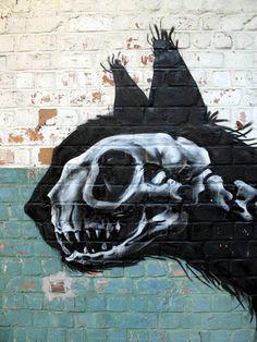 X-Ray Cat .Urban graffiti - Ghent - Roa #street #art