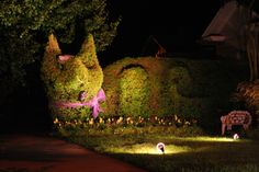 #Hedging meet Alice in Wonderland! What a fantastic idea - it's pictures like this that keep us inspired! #Gardening #Imagination