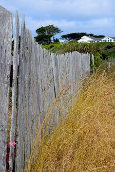 #Bandon #Beach #Fence by Michele Avanti